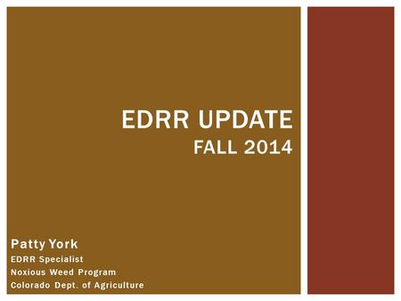 Patty York EDRR Specialist Noxious Weed Program Colorado Dept. of Agriculture EDRR UPDATE FALL 2014.