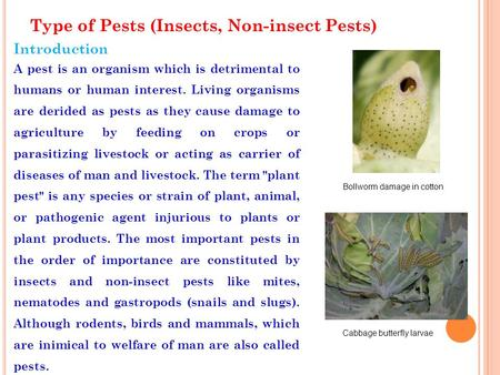 Type of Pests (Insects, Non-insect Pests) Introduction A pest is an organism which is detrimental to humans or human interest. Living organisms are derided.