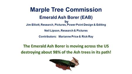 Marple Tree Commission Emerald Ash Borer (EAB) by Jim Elliott, Research, Pictures, Power Point Design & Editing Neil Lipson, Research & Pictures Contributors: