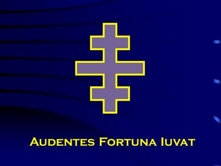 "Audentes Fortuna Iuvat. Beginning in January 2008 We laid out the goals for the coming year in the ""Knight Templar"" (Magazine)"