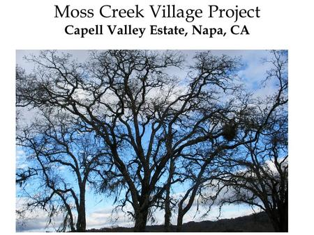 Moss Creek Village Project Capell Valley Estate, Napa, CA.