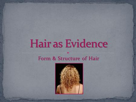 Form & Structure of Hair. Hair is frequently found at a crime scene Hair is frequently found at a crime scene Locard Exchange Principle Locard Exchange.