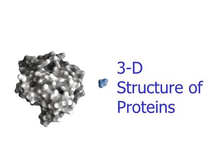 3-D Structure of Proteins. The spatial arrangement of atoms in a protein is called its conformation. Proteins in any of their functional folded conformations.