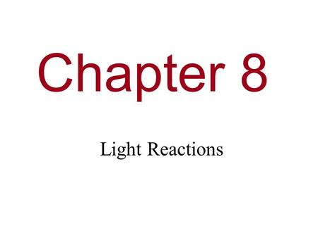 Chapter 8 Light Reactions. Need To Know How photosystems convert light energy into chemical energy. (There will be more on this in the next couple of.