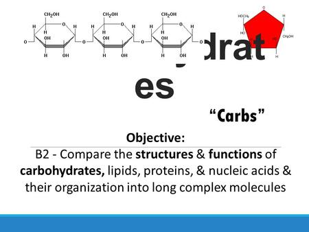 Carbohydrat es Objective: B2 - Compare the structures & functions of carbohydrates, lipids, proteins, & nucleic acids & their organization into long complex.