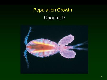 1 Population Growth Chapter 9. 2 Outline Geometric Growth Exponential Growth Logistic Population Growth Limits to Population Growth  Density Dependent.
