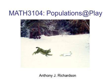 MATH3104: Anthony J. Richardson.