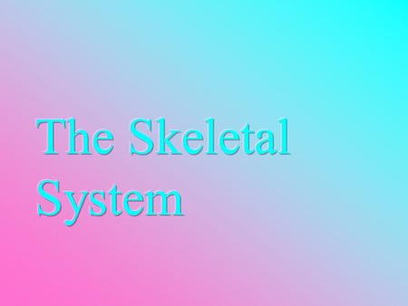 The Skeletal System  Parts of the skeletal system  Bones (skeleton)  Joints  Cartilages  Ligaments  Divided into two divisions  Axial skeleton.