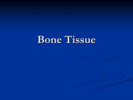 Bone Tissue. Support Provides attachment for tendons of skeletal muscles Provides attachment for tendons of skeletal muscles.