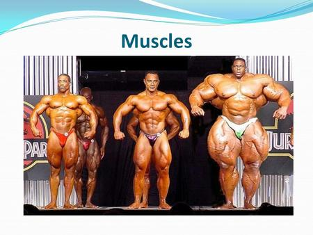 Muscles. There are over 660 skeletal muscles in the body. Used to create all voluntary movement. Contract and relax There are three types of muscle tissue: