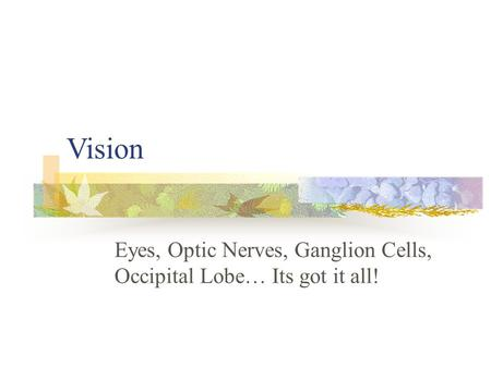 Vision Eyes, Optic Nerves, Ganglion Cells, Occipital Lobe… Its got it all!