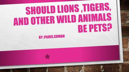 SHOULD LIONS,TIGERS, AND OTHER WILD ANIMALS BE PETS? BY :PARIS.COMAN.