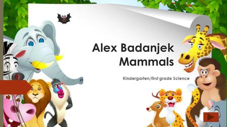 Alex Badanjek Mammals Kindergarten/first grade Science.