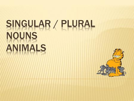 " Singular is one!  Plural is many!  Rule 1: To make a singular word plural, in most cases ""S"" is added to the end of the word."