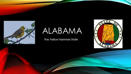 ALABAMA The Yellow Hammer State. HISTORY OF THE STATE Alabama became a state of the United States of America on December 14, 1819. The word Alabama means.