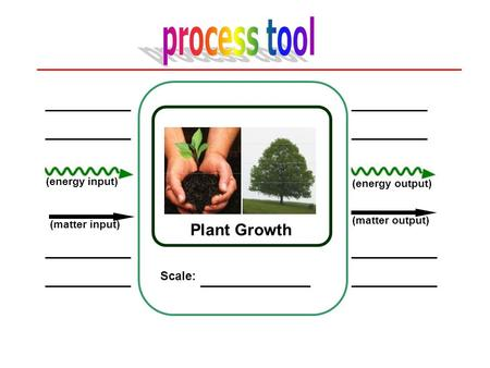 process tool Plant Growth Scale: (energy input) (energy output)