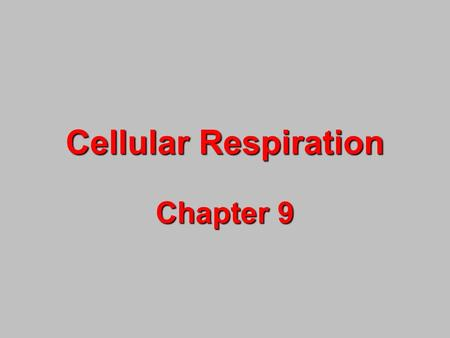 Cellular Respiration Chapter 9. What is a calorie? The amount of energy need to raise the temperature of 1 g of H 2 O 1 o C. * The Calorie used on food.