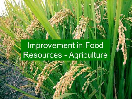 Improvement in Food Resources - Agriculture. Crop Seasons Kharif Season Rabi Season Rainy season crops Winter season crops.
