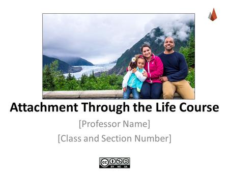 Attachment Through the Life Course [Professor Name] [Class and Section Number]