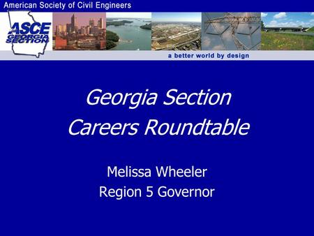Georgia Section Careers Roundtable Melissa Wheeler Region 5 Governor.