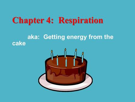 Chapter 4: Respiration aka: Getting energy from the cake.