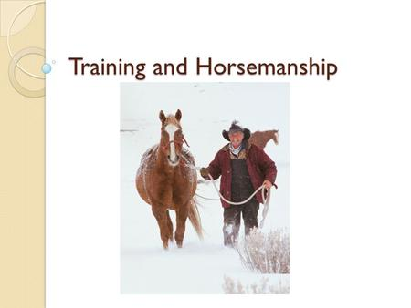 Training and Horsemanship. Objectives Explain the basic principles of training a horse Describe basic horsemanship procedures.