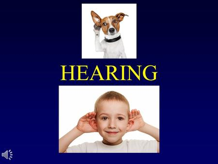 HEARING. The Nature of Sound Sound, like light, comes in waves Sound is vibration Features of sound include: –Pitch / Hertz – Loudness / Decibels.