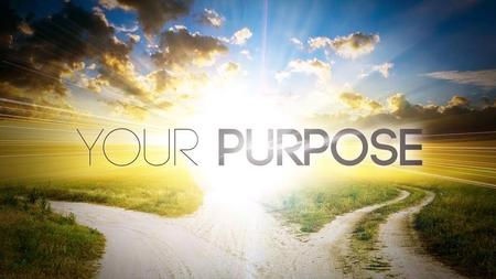 Not your purpose…but His purpose Are you living life according to His purpose life?