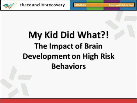 My Kid Did What?! The Impact of Brain Development on High Risk Behaviors.