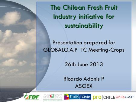 The Chilean Fresh Fruit Industry initiative for sustainability Presentation prepared for GLOBALG.A.P TC Meeting-Crops 26th June 2013 Ricardo Adonis P ASOEX.