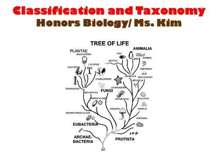 Classification and Taxonomy Honors Biology/ Ms. Kim