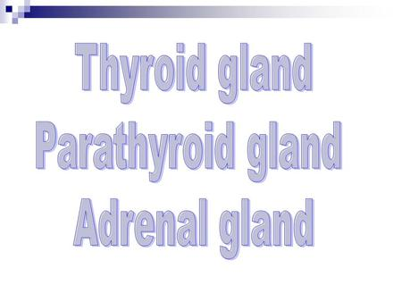 Thyroid gland Parathyroid gland Adrenal gland.