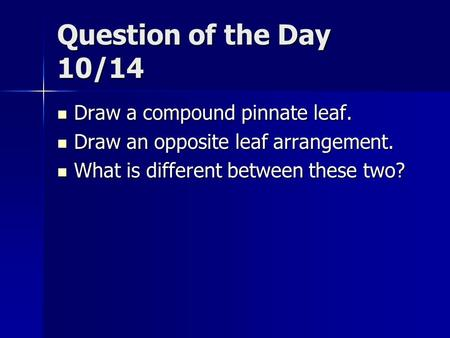 Question of the Day 10/14 Draw a compound pinnate leaf. Draw a compound pinnate leaf. Draw an opposite leaf arrangement. Draw an opposite leaf arrangement.