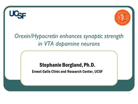 Orexin/Hypocretin enhances synaptic strength in VTA dopamine neurons Stephanie Borgland, Ph.D. Ernest Gallo Clinic and Research Center, UCSF.
