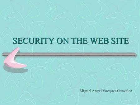 SECURITY ON THE WEB SITE Miguel Angel Vazquez Gonzalez.