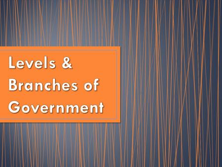 You just read about the 3 different levels of government in the U.S. – National (also called federal) State Local (county/city) But within each of those.