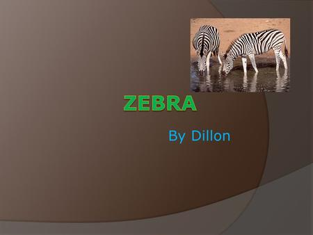 By Dillon. Habitat  Africa  Biome-Savannah  Home-Everywhere  Does not make its home no.