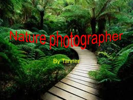 By Tanner. What do they do? They take photos of things in nature. They will travel all around the globe to get pictures. They take pictures of plants.