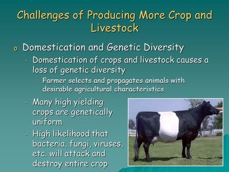 Challenges of Producing More Crop and Livestock o Domestication and Genetic Diversity Domestication of crops and livestock causes a loss of genetic diversity.
