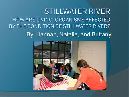 By: Hannah, Natalie, and Brittany. Location  Western Ohio The Stillwater Watershed drains 673 square miles in Western Ohio (including 32 square miles.