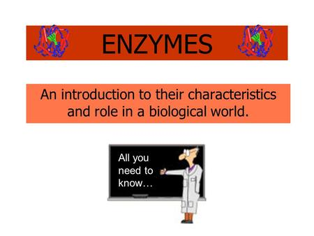 An introduction to their characteristics and role in a biological world. ENZYMES All you need to know…