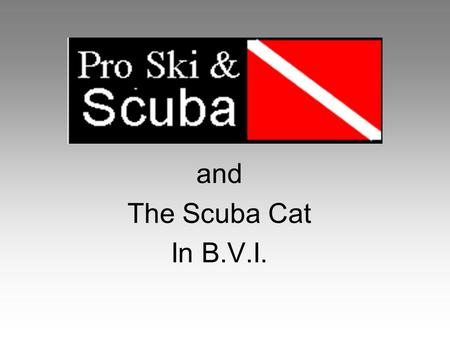 And The Scuba Cat In B.V.I.. The Boat 4 Cabins Galley 2 Heads w/ Showers Covered Deck Large Dining area Smooth Sailing Vessel.