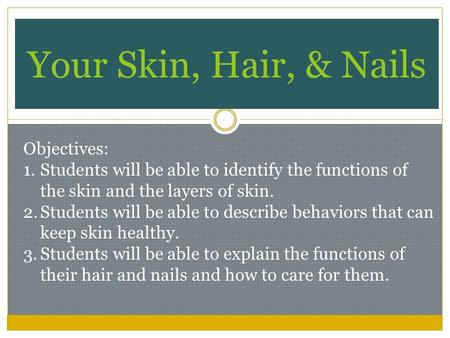 Your Skin, Hair, & Nails Objectives: