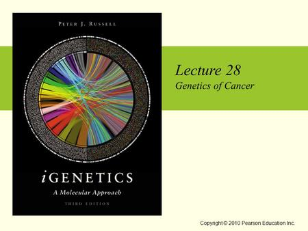 Lecture 28 Genetics of Cancer Copyright © 2010 Pearson Education Inc.