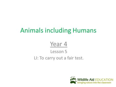 Animals including Humans Year 4 Lesson 5 LI: To carry out a fair test.