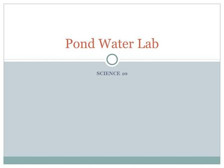 SCIENCE 10 Pond Water Lab. During the Lab… Obtain pond water sample from side of class Try to get water from sides or near bottom Use a small drop Keep.