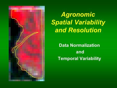 Agronomic Spatial Variability and Resolution Data Normalization and Temporal Variability.