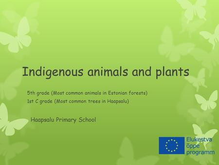 Indigenous animals and plants 5th grade (Most common animals in Estonian forests) 1st C grade (Most common trees in Haapsalu) Haapsalu Primary School.