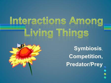 Symbiosis, Competition, Predator/Prey. Because, in order to survive, a living organism depends on other living things. Why Do Living Things Interact With.