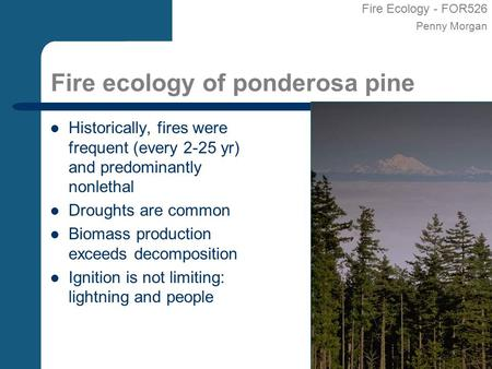 Fire Ecology - FOR526 Penny Morgan Fire ecology of ponderosa pine Historically, fires were frequent (every 2-25 yr) and predominantly nonlethal Droughts.